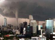 Dfgdfhdfhdfhdfhdhdhfg the tornado in tampa