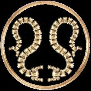 Darknut Legion.png