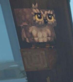 Owl branch.jpg