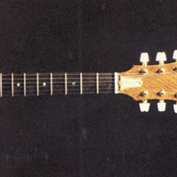 Guitar models with neck through body construction