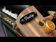 Ibanez SR5000 Prestige Bass (New Model) - Up Close Video Review