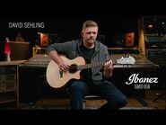 Ibanez AE410-LGS - David Sehling