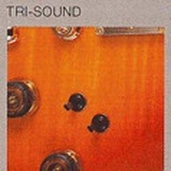 Tri-sound switch