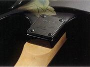 Cutaway Heel.jpg