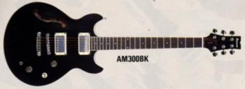 1989 AM300 BK.png