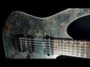 Ibanez RG921WBB Electric Guitar Review