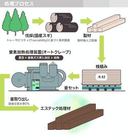 S-Tech process diagram.png