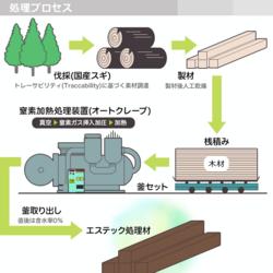 S-Tech wood