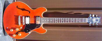 1981 AS55 RD.jpg