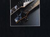 1989 Series catalog