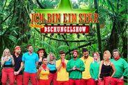 TN Die große Dschungelshow
