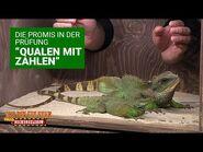 """Prüfung Tag 12 - """"Qualen mit Zahlen"""" - Die große Dschungelshow 2021"""
