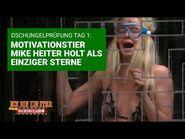 Dschungelprüfung Tag 1 - Motivationstier Mike Heiter holt Sterne - Die große Dschungelshow 2021