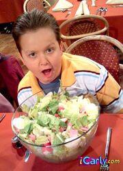 Gibby and salad.jpg