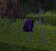 Purple Lighting dragon egg hatching