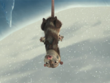 Mutter Opossum