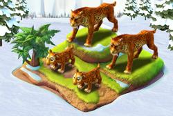 Completeleopard.png