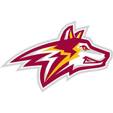 Alvernia Golden Wolves women's ice hockey
