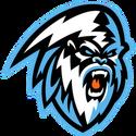 Kootenay 2017 logo.png