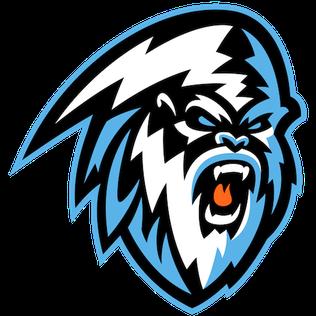 Winnipeg Ice