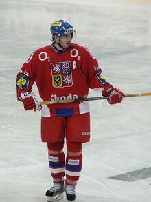 Tomáš Žižka.jpg