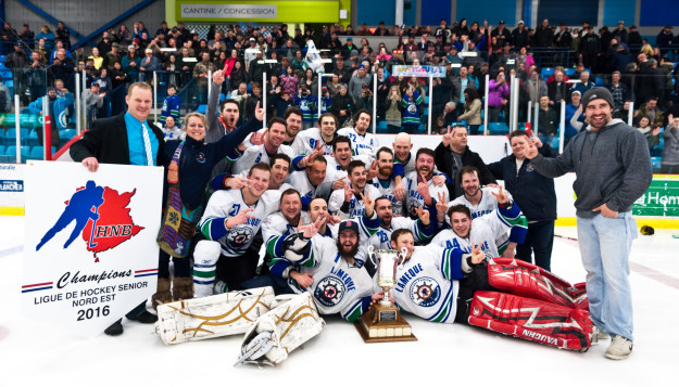 2015-16 North East Senior Hockey League Season
