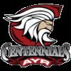 Ayr Centennials