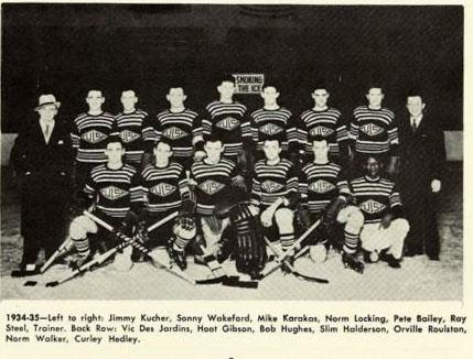 1934-35 AHA season