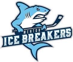 Mentor Ice Breakers