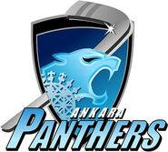 Ankara Panthers