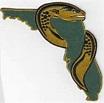 Florida Eels