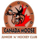 Toronto Canada Moose