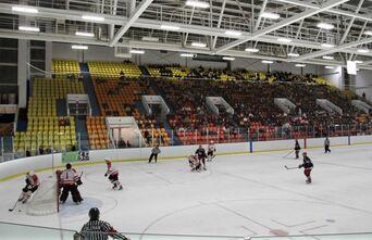Steve Yzerman Arena.jpg