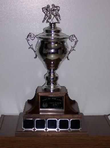 Treaty Six Hockey League