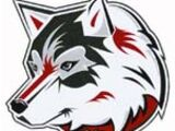 St. Cloud State Huskies women's ice hockey