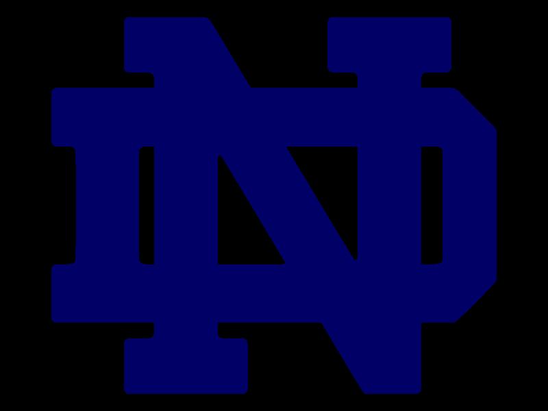 2008–09 Notre Dame Fighting Irish men's ice hockey season