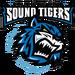 Logo 2001-2005