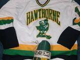 Hawthorne College Highlanders men's ice hockey