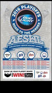 2016 AESHL Playoff poster.jpg