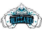 West Michigan Blizzard