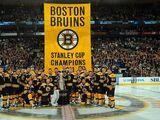2011-12 Boston Bruins season