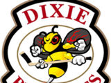 Dixie Beehives (2005–2011)