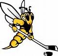 Wisconsin-Superior Yellowjackets women's ice hockey