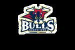 logo as NA3HL team