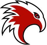 Cambridge Winter Hawks.JPG