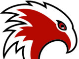 Cambridge Winter Hawks