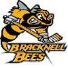 Bracknell Bees logo.png