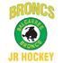Balcarres Jr Broncs.png