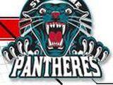 St. Jerome Panthers