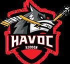 Hudson Havoc.png